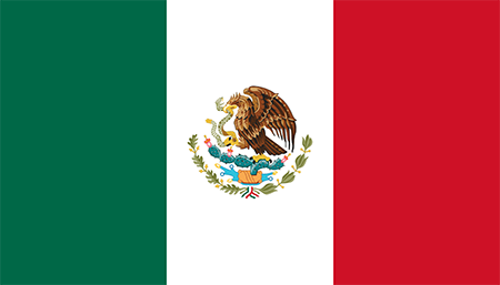 Mexico process services