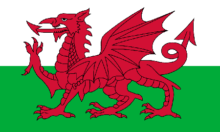 Wales process services